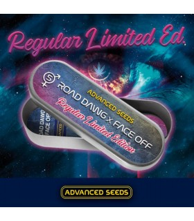 Ed. Especial - Road Dawg x Face Off  5 u. reg. Advanced Seeds