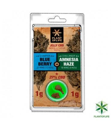 CBD Polen Plant of Life 22% Jelly Amnesia 1g + Blueberry 1g.
