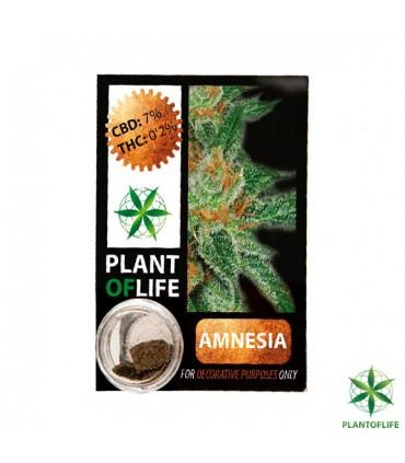 Plant Of Life - Polen CBD - 1gr - 3,8%.