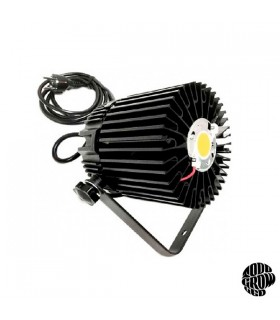 Luminaria Led TGL 100 w STAR 100  -  3000 K. Citizen