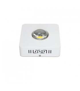 LED - COB System 1 x 100W - Grow & Bloom.