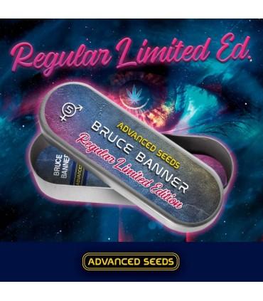 Bruce Banner - 5 Unidades - Advanced Seeds.