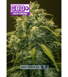 Jack Diesel CBD - Positronics - Kayamurcia.es