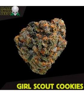 Girl Scout Cookies - Black Skull Seeds.