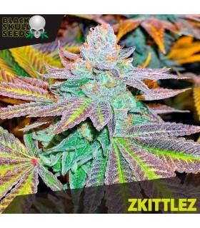 Zkittlez - Black Skull Seeds.