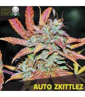 Auto Zkittlez - Black Skull Seeds.