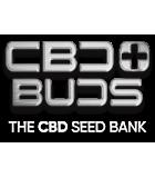 CBD PLUS BUDS